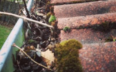 Gør dit hus klar til efteråret og undgå vandskader